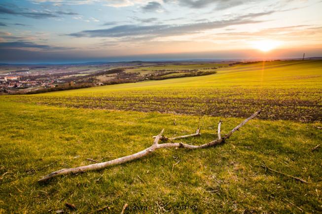Derselbe Sonnenuntergang, aber diesmal mit einem Ast im Vordergrund, der das wahre Ausmaß der gesamten Szene hervorhebt. Beachten Sie auch die Positionierung des Horizonts im oberen Drittel des Bildes. Canon 5D Mark II, EF Canon 16-35mm F2.8 II USM, 1/50 s, F7.1, ISO 100, focus 20 mm.