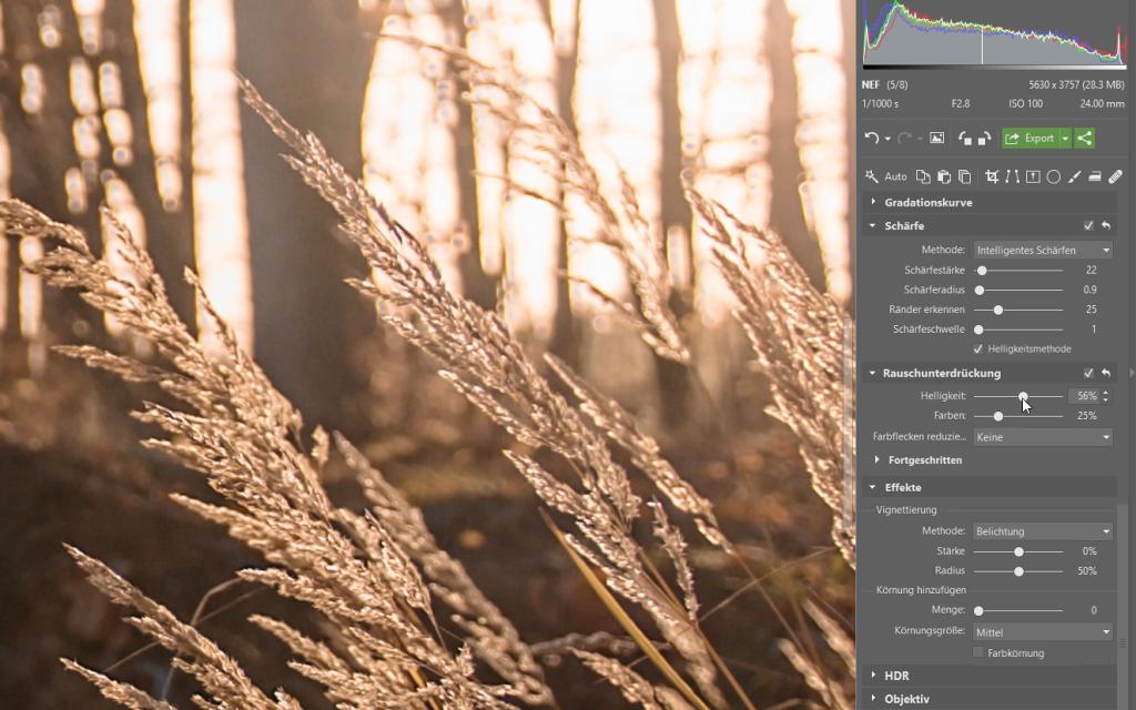 Wie bearbeitet man Fotos im RAW-Format: Rauschreduzierung und Erhöhung der Bildschärfe im Modul Entwickeln.