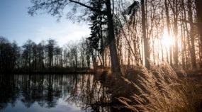 Wie bearbeitet man Fotos im RAW-Format Ein paar Klicks zum perfekten Foto