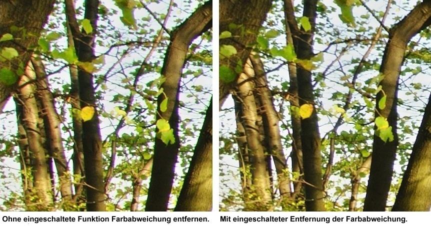 Eine erhebliche Farbabweichung kann ein Foto verderben, weshalb man sie sicherlich entfernen sollte, wenn man das Foto ausdrucken oder in hoher  Auflösung weiterverwenden möchte.