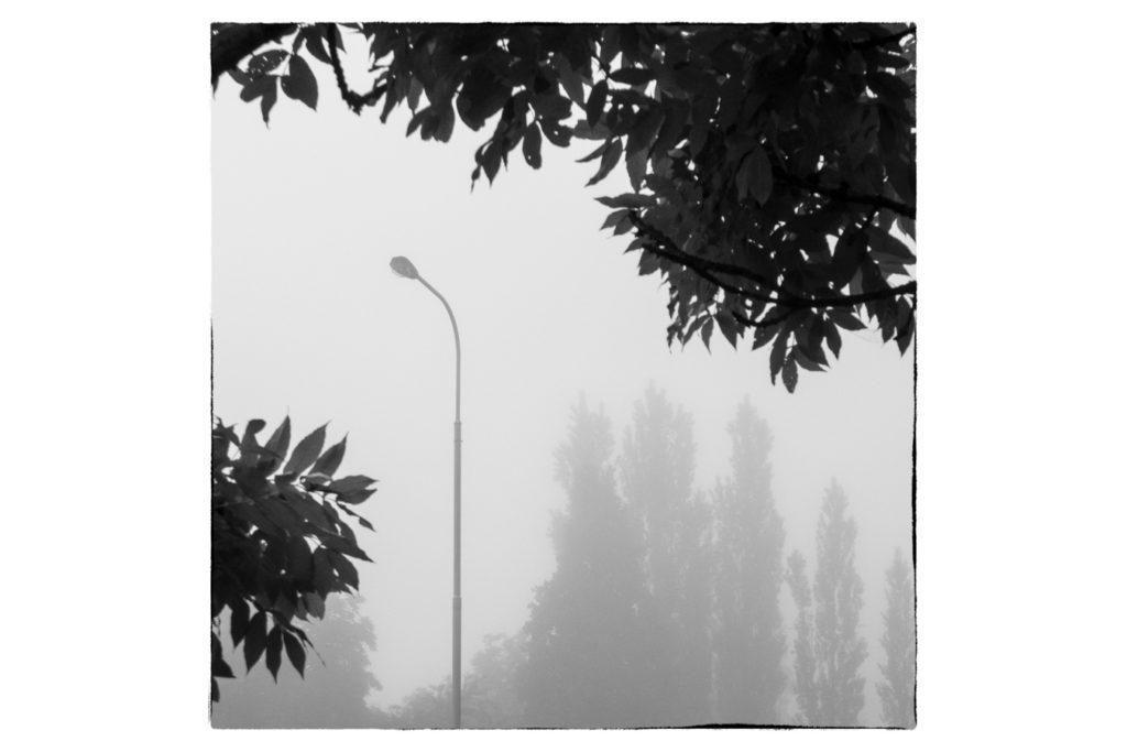 Hier befindet sich zwar ein konkreter Gegenstand kompositionsmäßig im Goldenen Schnitt, es handelt sich aber offensichtlich nicht um ein Foto der Straßenlaterne. Das Fotomotiv ist die Lichtatmosphäre und eine interessante Komposition.