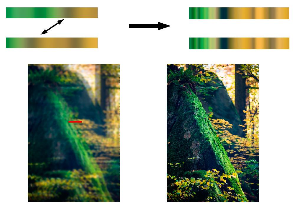 Die Schärfe wird am rot markierten Streifen ermittelt. Das Objektiv schärft anhand der ursprünglichen Phasenunterschiede.