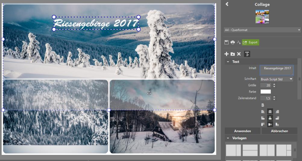 Mehrere Fotos auf 1 Seite drucken: Fügen Sie Ihrer Collage einen Text hinzu.