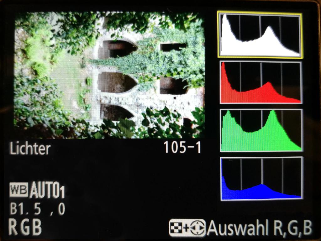 Anzeige des RGB Histogramms zusammen mit dem Helligkeitshistogramm sowie der Anzeige Lichter – eine Möglichkeit, wie Sie das Histogramm auf den einer Nikon-Kamera anzeigen können. Der grüne Balken ist am stärksten vertreten, weil die Farbe Grün am meisten vertreten ist. Trotzdem ist kein Bereich überbelichtet.