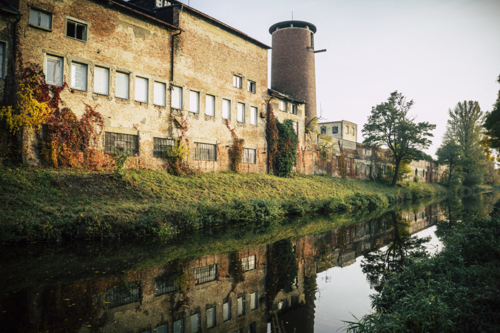 Die Herbstfarben ergänzen sich gegenseitig mit der alten sowie abgeblätterten Farbe auf der Mauer eines Industrieareals.