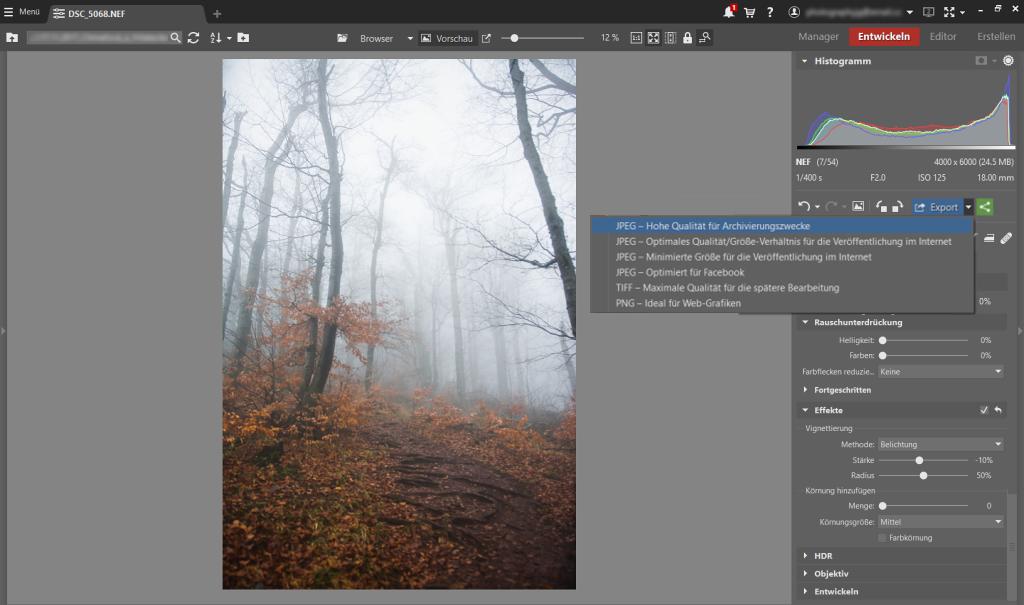 Wie fotografiert und bearbeitet man Landschafsaufnahmen mit Nebel: Export.