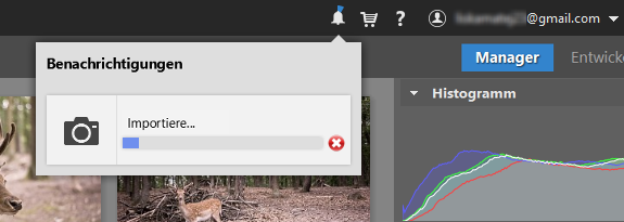Wie man seine Fotos auf den Computer lädt: Den Verlaufsstatus können Sie beim Klick auf das Glocken-Icon rechts oben nachverfolgen.