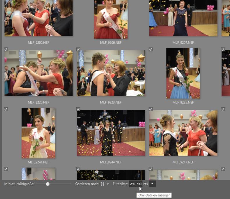Wie man seine Fotos auf den Computer lädt: Falls Sie nach bestimmten Dateitypen filtern möchten, dann wählen Sie unten die entsprechenden Formate aus.