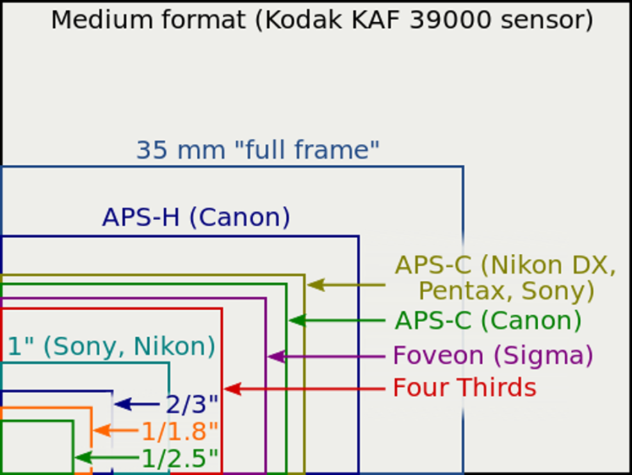 Erfahren Sie, wie sich ihr Cropfaktor unterscheidet: Vergleich verschiedener Größen von Bildsensoren.