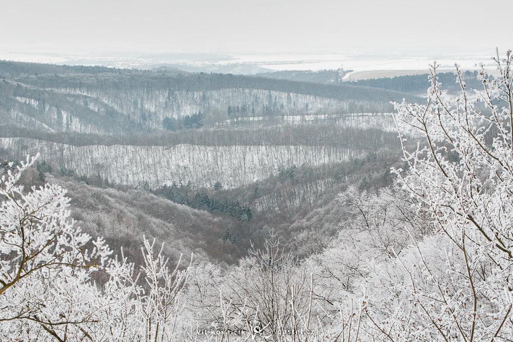 Das Tal wird von Ästen mit Raufrost umrahmt.