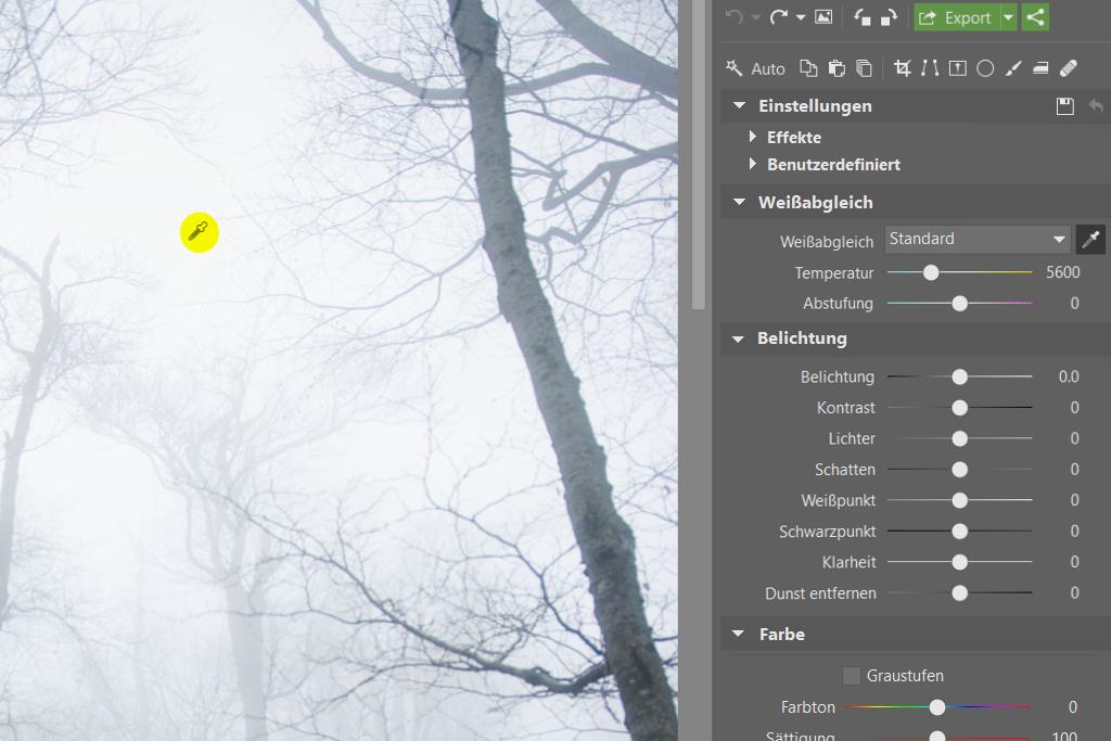 Wie fotografiert und bearbeitet man Landschafsaufnahmen mit Nebel: Weissabgleich.