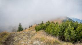 Wie fotografiert und bearbeitet man Landschafsaufnahmen mit Nebel