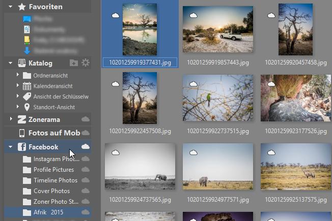 Mit nur 6 Klicks Fotos auf Facebook veröffentlichen: Unter dem Icon Facebook links finden Sie all Ihre Alben.