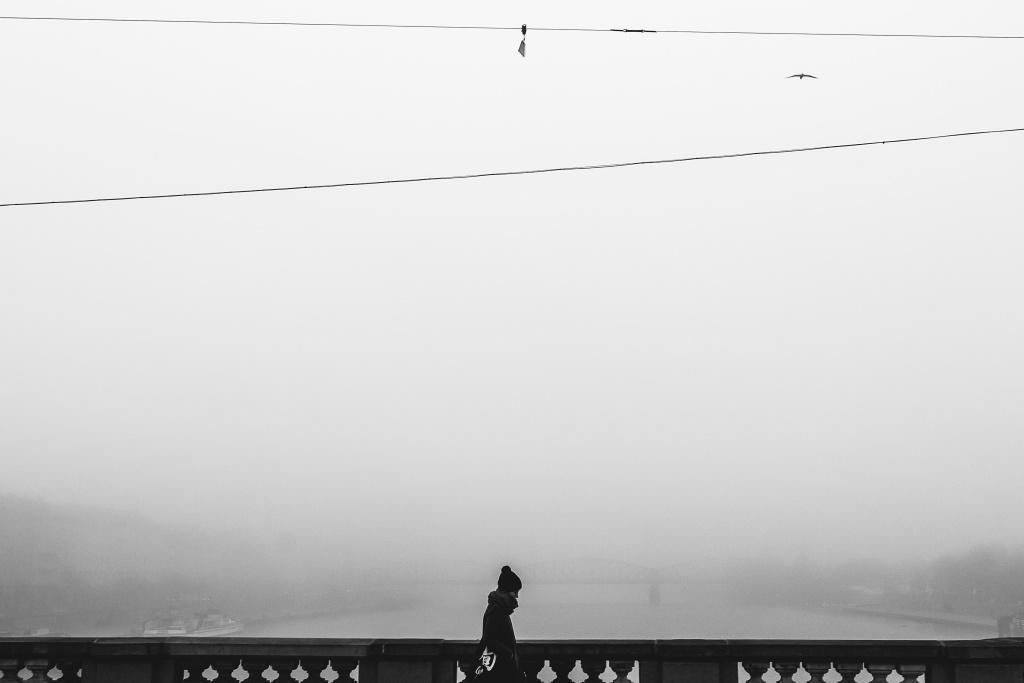 Falls Sie im Winter auf Nebel treffen, dann haben Sie Glück.