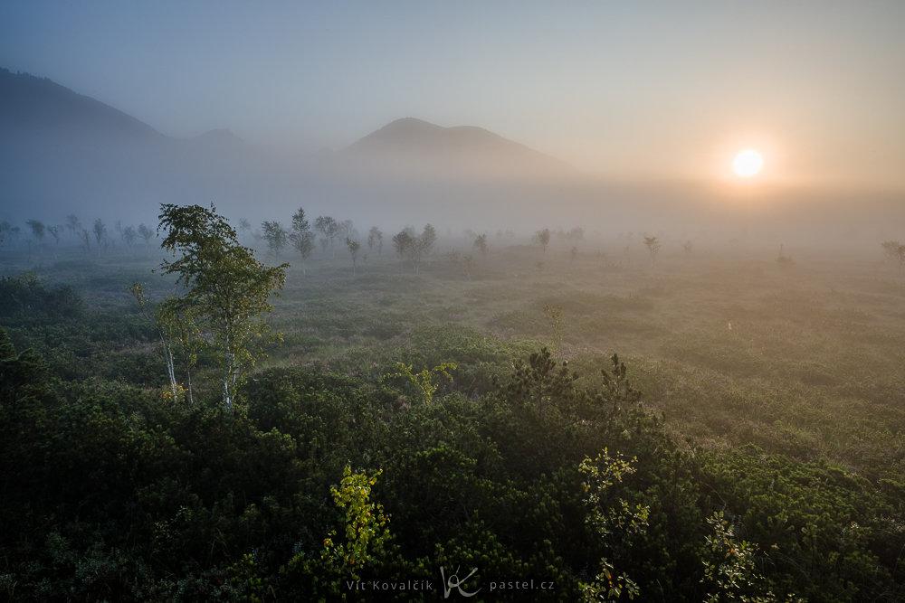 Wie man bei Nebel fotografiert: Um 7 Uhr hat sich bereits die Sonne gezeigt und der Nebel wurde langsam verdrängt.
