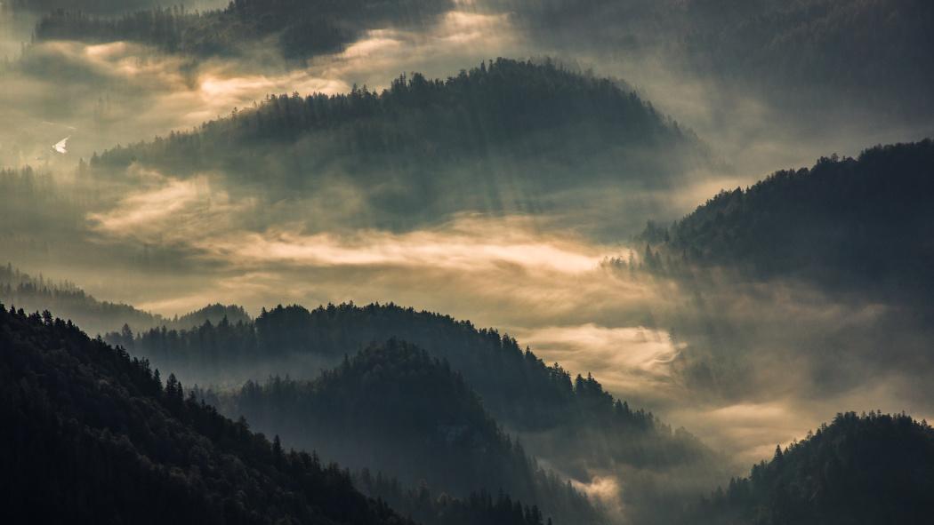 Neue Möglichkeiten, wie man bei Nebel fotografiert
