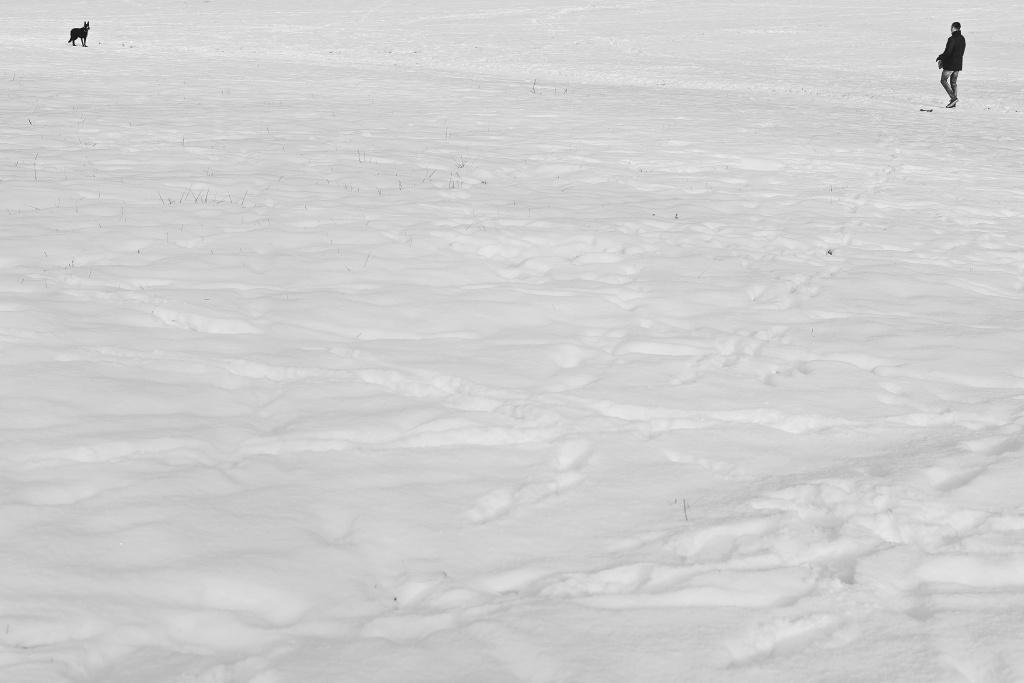 Große schneebedeckte Flächen sind für die Belichtungsmessung sehr anspruchsvoll und insbesondere dann, wenn die Sonne scheint.