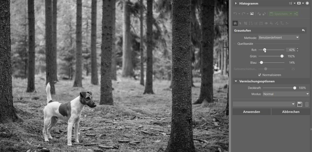 Schwarz-Weiß Fotos erstellen und bearbeiten: die manuelle Methode.
