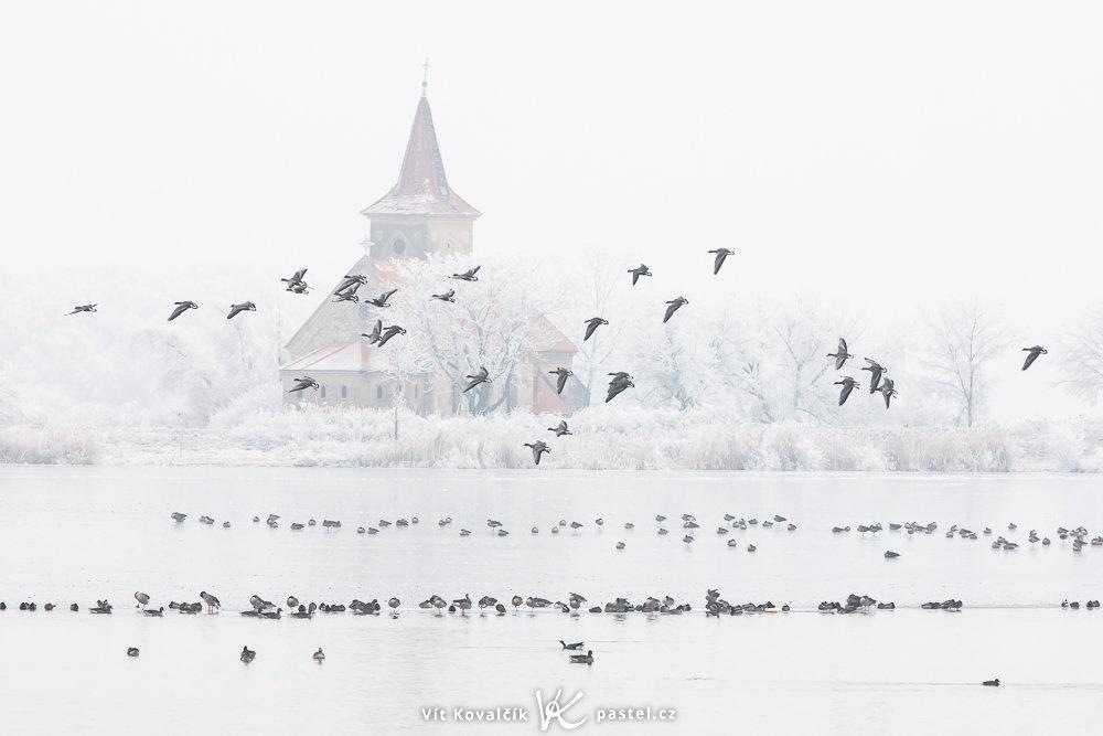 Landschaftsaufnahmen mit dem Teleobjektiv: die Auswahl des richtigen Ortes und ein bisschen Geduld sind das Ergebnis dieses Fotos.