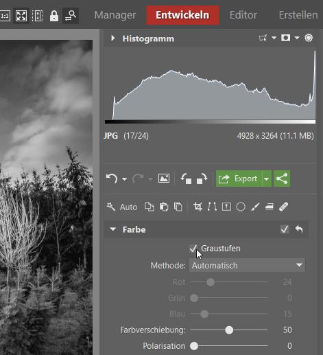 Schwarz-Weiß Fotos erstellen und bearbeiten: die Graustufen finden Sie unter der Sektion Farbe.