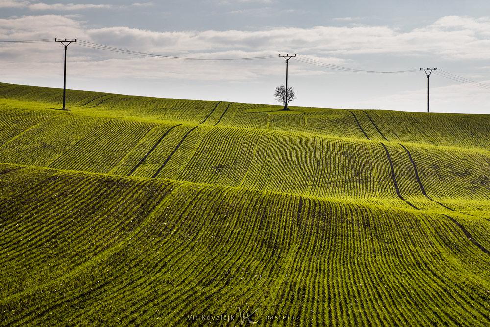 Landschaftsaufnahmen mit dem Teleobjektiv: Oberleitungsmasten auf den Feldern als Teil der Bildkomposition.