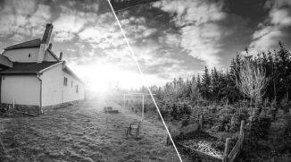 Schwarz-Weiß Fotos erstellen und bearbeiten