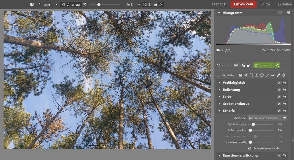 Bearbeitungen, die Ihre Fotos vom Smartphone verbessern: Um die Bildschärfe zu verbessern, habe ich bei allen Schiebereglern unter der Sektion Schärfe, die Werte leicht erhöht.