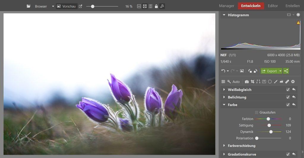 3 Bearbeitungen für lebendigere Blumenfotos: Unter der Sektion Farbe habe ich mithilfe der entsprechenden Schieberegler die Farbsättigung und Dynamik erhöht.