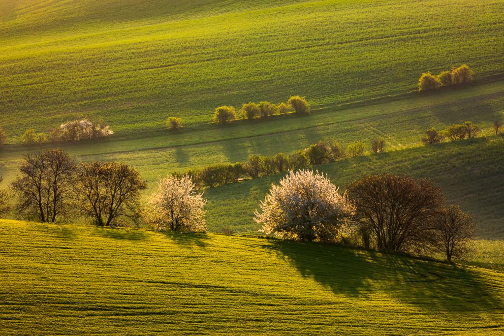 Landschaften unter unterschiedlichen Bedingungen fotografieren - die sonne oben