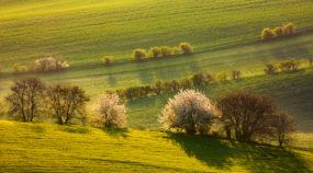 Landschaften unter unterschiedlichen Bedingungen fotografieren I: Landschaften früh am morgen, am Abend und in der Nacht