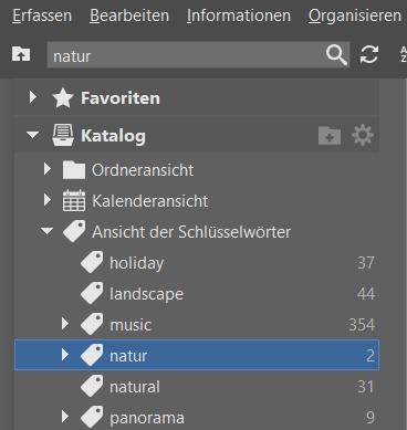 Bildverwaltung einfach gemacht dank Schlüsselwörtern: Hauptkategorien.