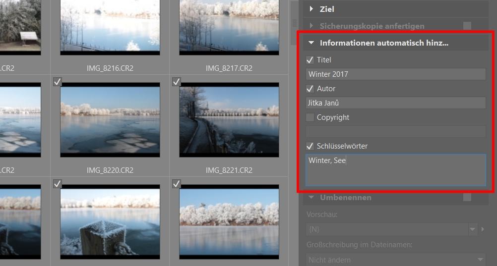 Bildverwaltung einfach gemacht dank Schlüsselwörtern: Bildimport.
