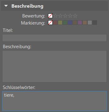 Bildverwaltung einfach gemacht dank Schlüsselwörtern: neue Schlüsselwörter.