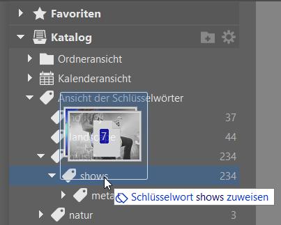 Bildverwaltung einfach gemacht dank Schlüsselwörtern: Schlüsselwört zuweisen.
