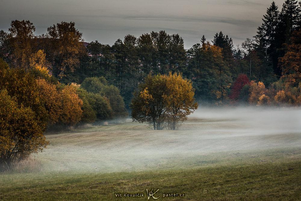 Landschaften während des Tages und bei Regen fotografieren: Nebel, auf den ich zufällig auf der Heimfahrt von einem Fotoshooting gestoßen bin.