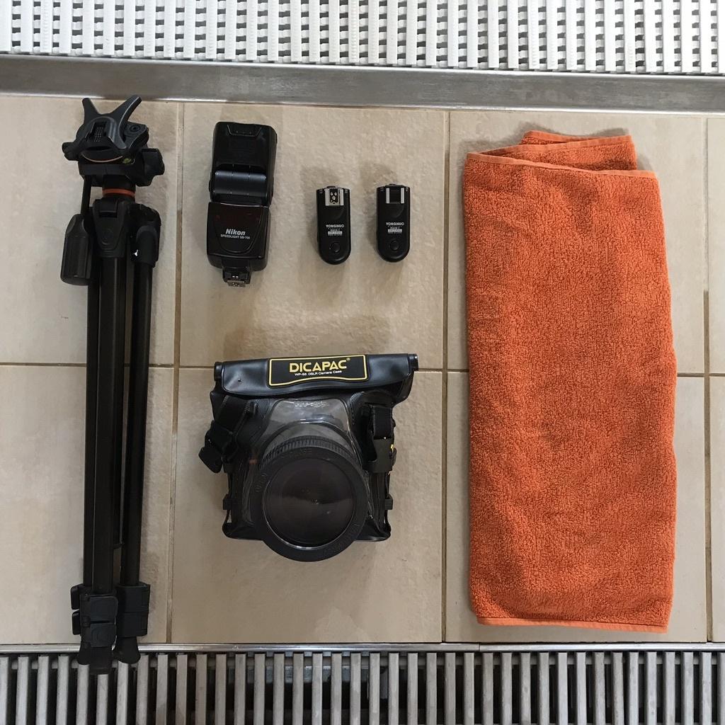 Wie fotografiert man unter Wasser - gear