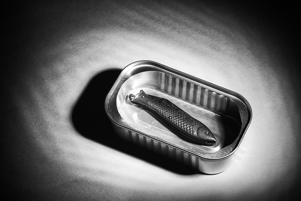 Wie man Stillleben fotografiert: Eine ziemlich scharfe Sardine – Stillleben sollte die Betrachter auch überraschen können.