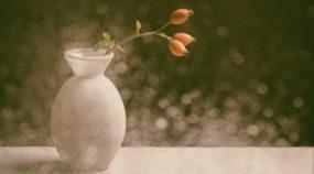 Stillleben fotografieren: 6 Tipps, wie Sie perfekte Ergebnisse erzielen