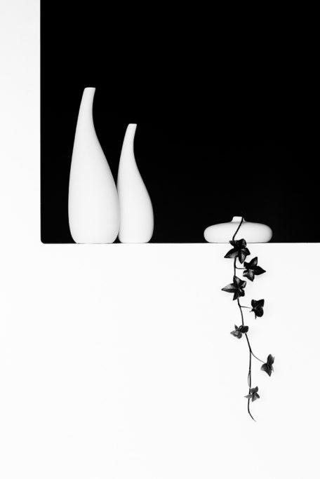 Wie man Stillleben fotografiert: Foto, dass auf dem tonalen Kontrast und der Harmonie der Formen basiert.