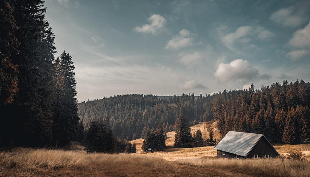 Mit dem Zuschneiden zur besseren Komposition: 4 Möglichkeiten, wie man das Foto durch das Zuschneiden verbessern kann
