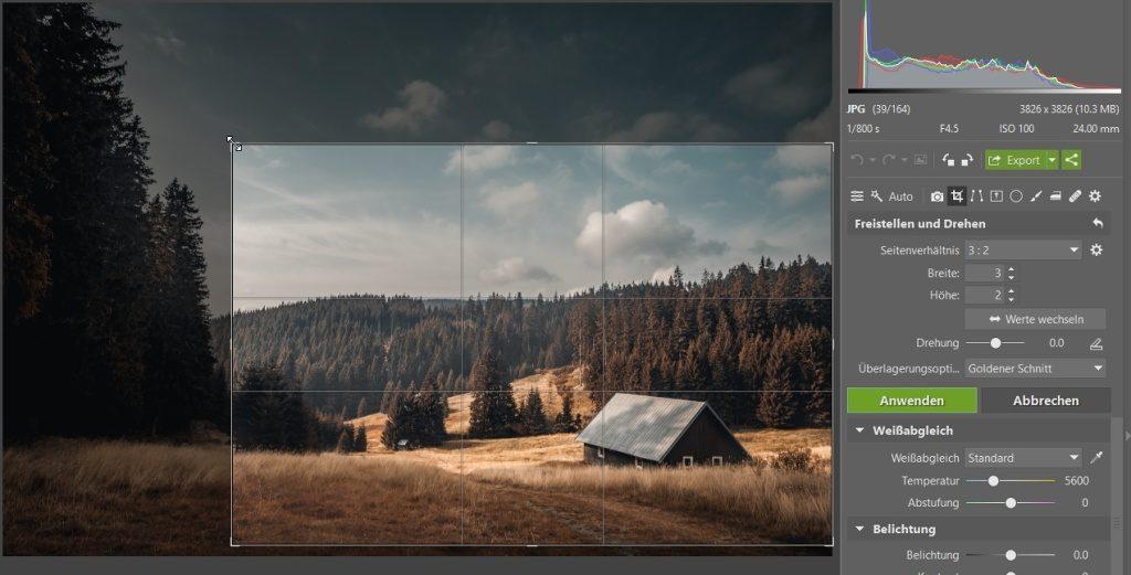 Wie man das Foto durch das Zuschneiden verbessern kann: der Goldene Schnitt.