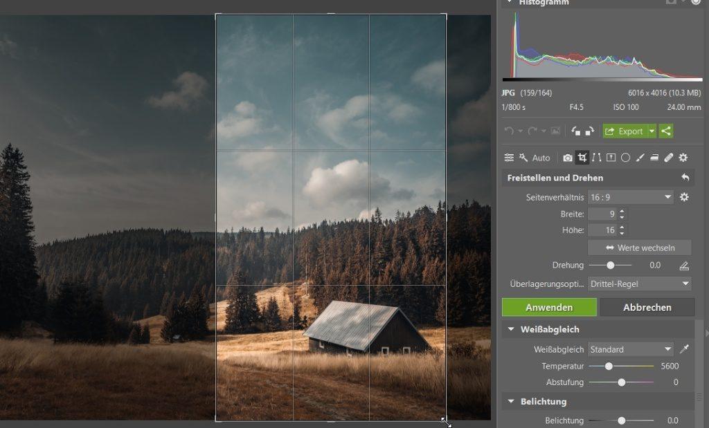Wie man das Foto durch das Zuschneiden verbessern kann: Wechseln Sie die Richtung beim Zuschneiden.