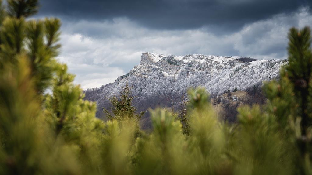 Winteraufnahmen im Freien - Klak
