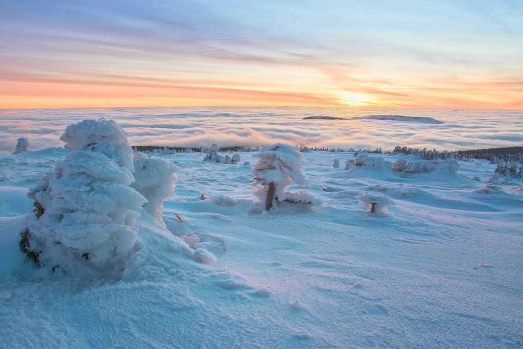 Winteraufnahmen im Freien - raureif inversion