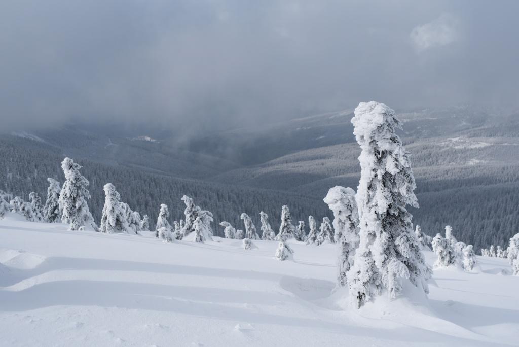 Peppen Sie Ihre Winterfotos auf - Originalbild