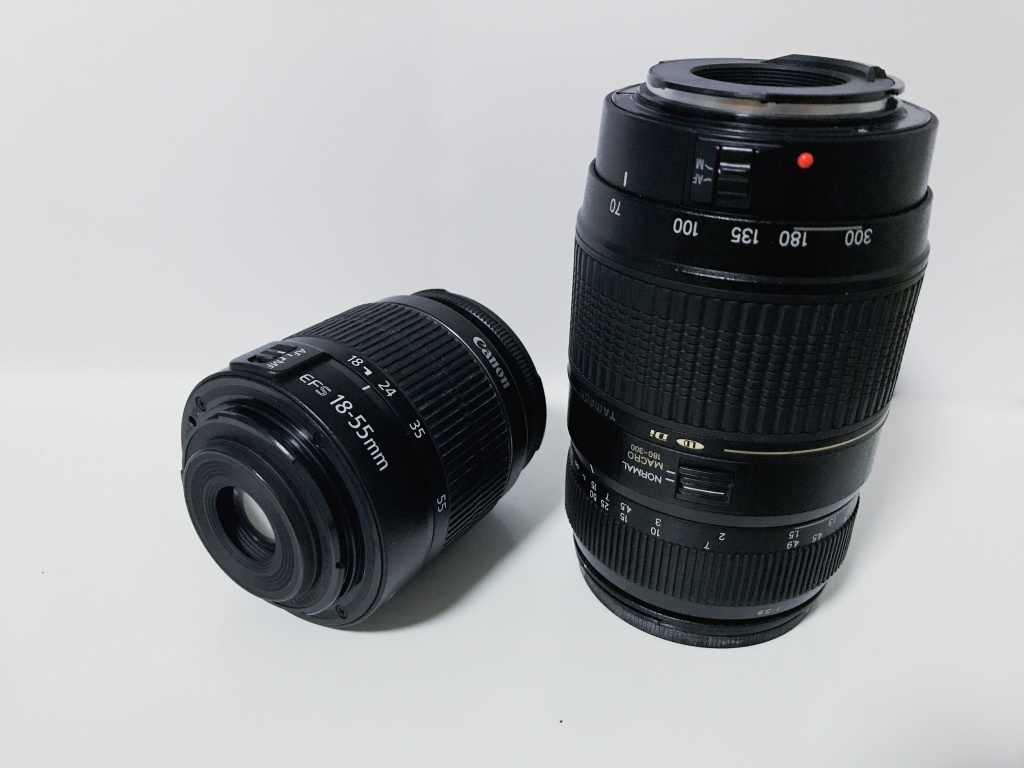 Fotokamera für Anfänger - objektive