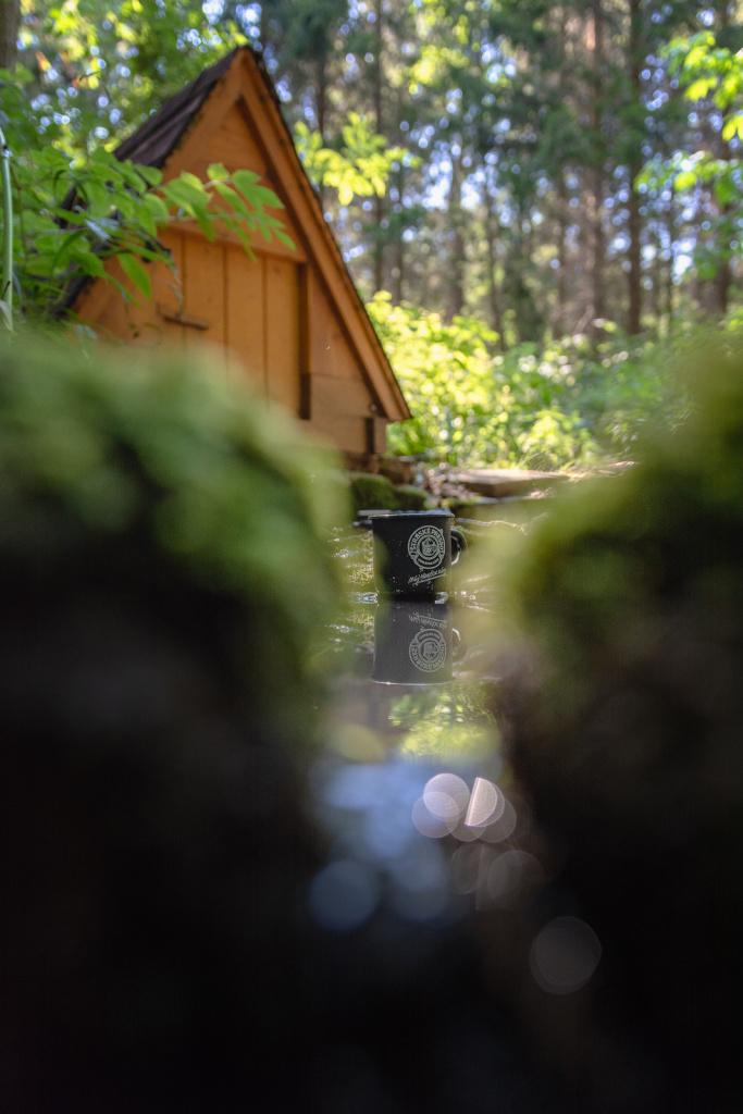 Landschaften anders fotografieren - waldbrunnen