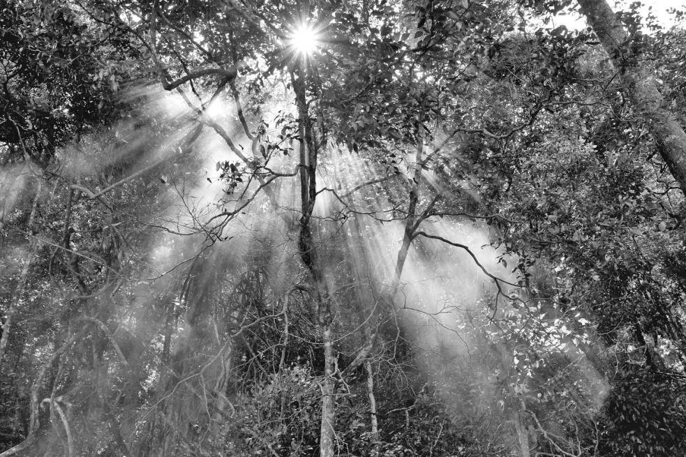 """Der """"fotografierende Regisseur"""" Jan Svatoš: Analog fasziniert mich, Digital stiehlt nicht die Seele, sondern Zeit"""