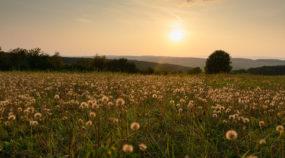 Experiment: Wie sich das Licht in der Landschaft im Laufe des Tages verändert
