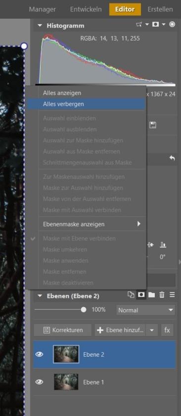 So erreichen Sie eine perfekte Symmetrie: Der Editor hilft Ihnen dabei